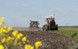 На півдні України стартувала посівна