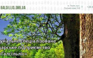 """Підсумки роботи дочірніх підприємств ОКС ЛГП """"Галсільлісу"""" за 9 місяців…"""