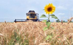 В липні презентують план держпідтримки аграріїв на 3-річний цикл, –…