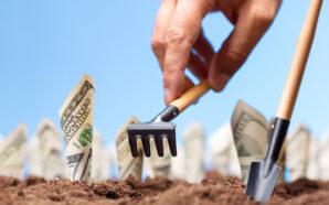 Уряд розподілив 4 млрд грн державної підтримки аграріїв на 2020…