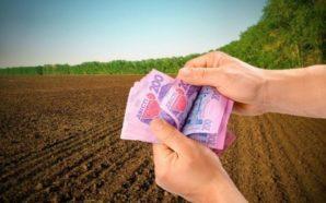 Право оренди землі: Держгеокадастр за тиждень наторгував 1,2 мільйона
