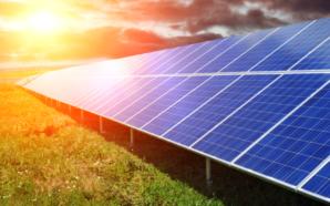 В Україні відкрили найпотужнішу сонячну електростанцію