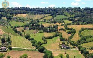 В Україні будуть якісні земельні кадастри – Гончарук анонсував перезйомку…