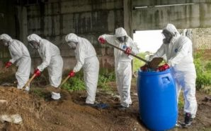 ЄБА схвалила утилізацію пестицидів за кордоном