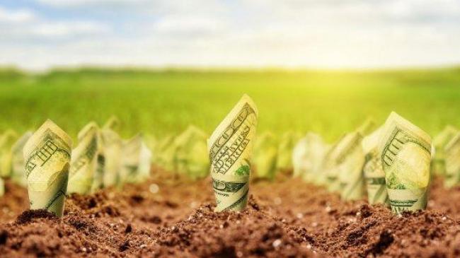 Аграрії не підтримують обмеження набуття землі у власність